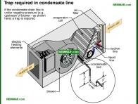 1245-co Trap required in condensate line - Condensate System - Air Condtioning - Air Conditioning and Heat Pumps