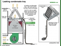 1243-co Leaking condensate tray - Condensate System - Air Condtioning - Air Conditioning and Heat Pumps