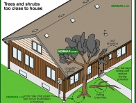 1942-co Trees and shrubs too close to house - Walks and Driveways and Grounds - Surface Water Control and Landscaping - Exterior