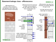 2094-co Basement leakage clues - efflorescence - Wet Basement and Crawlspaces - Interiors - Interior