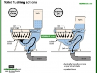 1677-co Toilet flushing actions - Toilets - Fixtures and Faucets - Plumbing