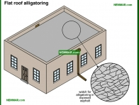 0093-co Flat roof alligatoring - Built Up Roofing - Flat Roofing - Roofing