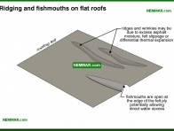 0095-co Ridging and fish mouths on flat roofs - Built Up Roofing - Flat Roofing - Roofing