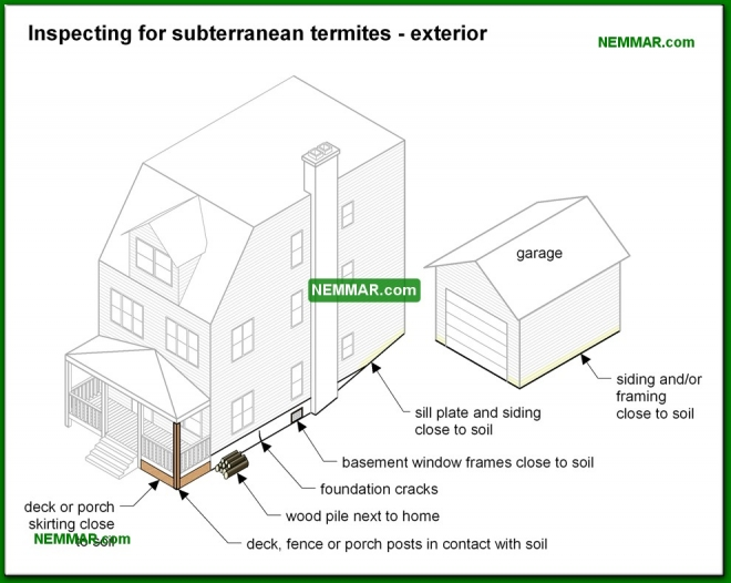 0348-co Vulnerabilities to subterranean termites - exterior - Inspecting For Termites - Floors - Structure