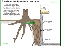 0256-co Foundation cracks related to tree roots - Problems - Footings and Foundations - Structure